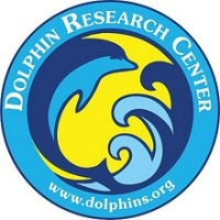 Dolphin Research Center on Grassy Key